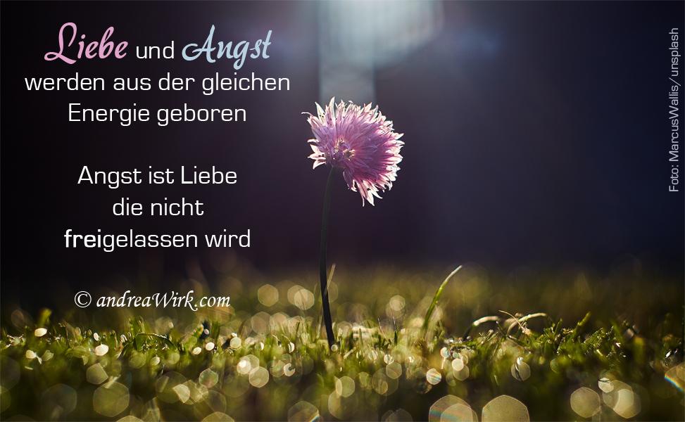Liebe & Angst ~ Weisheiten & Seelenworte