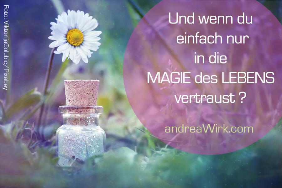 Magie des Lebens ~ Weisheiten & SeelenBotschaften